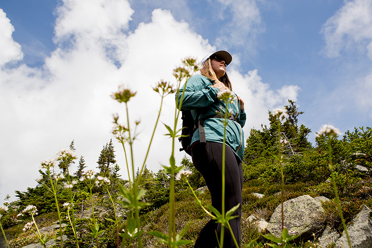 Hiker surrounded by wildflowers