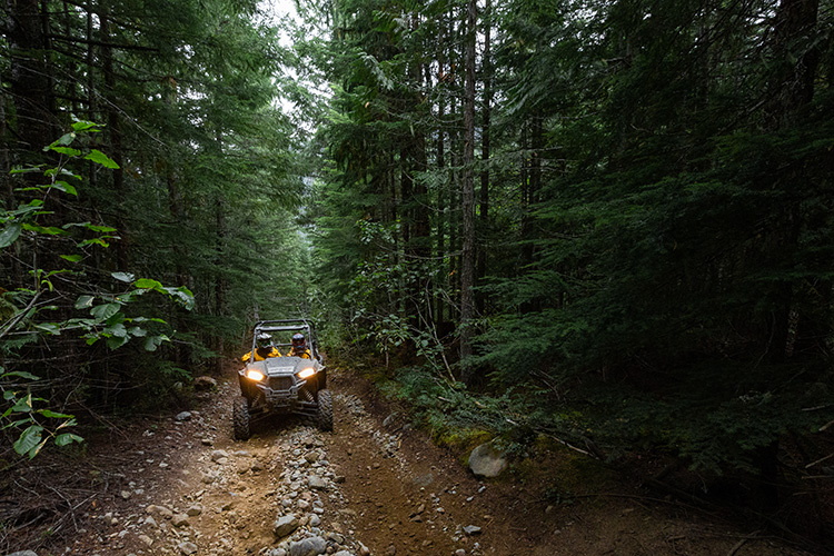 RZR Tour going through the woods in Whistler