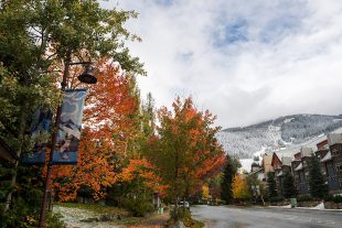 First Snowfall in Whistler