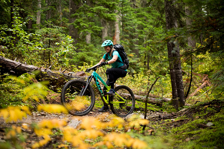 Mountain biker riding a mossy trail in Whistler