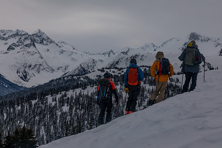Group of skiers scoping backcountry terrain in Whistler