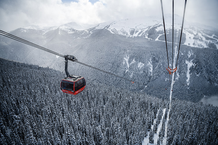 Peak 2 Peak gondola car against a snowy tree backdrop