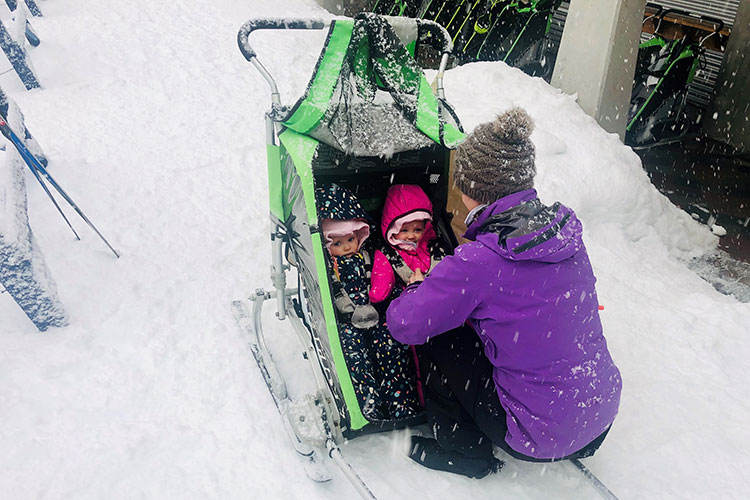 Twin babies in a chariot are going cross country skiing at Whistler Olympic Park.