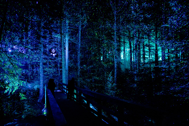 People viewing a light display in the forest from a bridge at Vallea Lumina