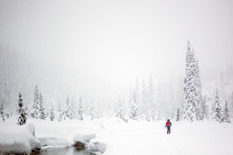 Snowshoeing in Whistler.