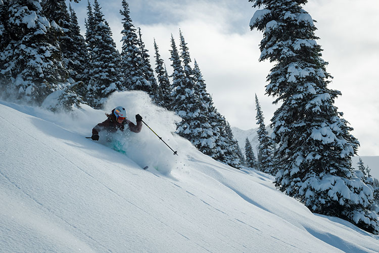 A skier finds powder in the Reservoir Trees on Whistler Blackcomb.