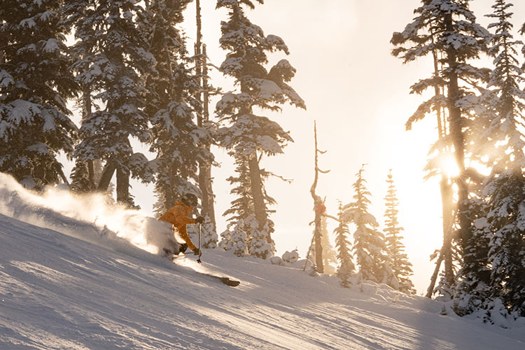 A skier has a sunny ride down Ridge Runner on Whistler Blackcomb.