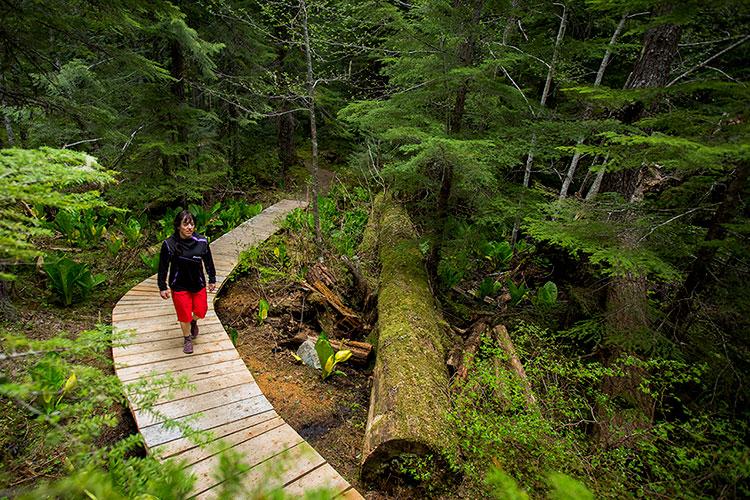 A woman walks along a wooden bridge in Whistler's rainforest.