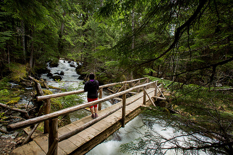 A woman watches a small waterfall in Whistler on a forest trail.