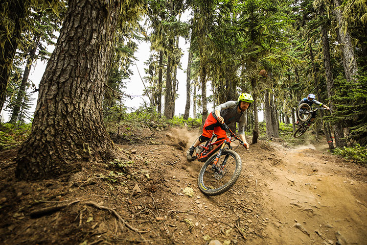 Two mountain bikers enjoy the trails in the Whistler Mountain Bike Park.