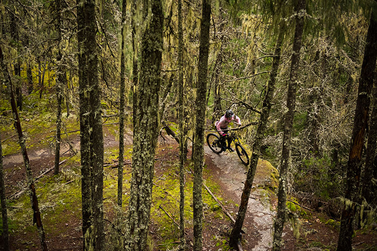 A cross-country bike rider weaves in the trees in Whistler's Lost Lake.