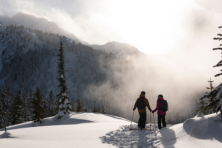 Two skiers look out across the snowy mountains in Whistler.