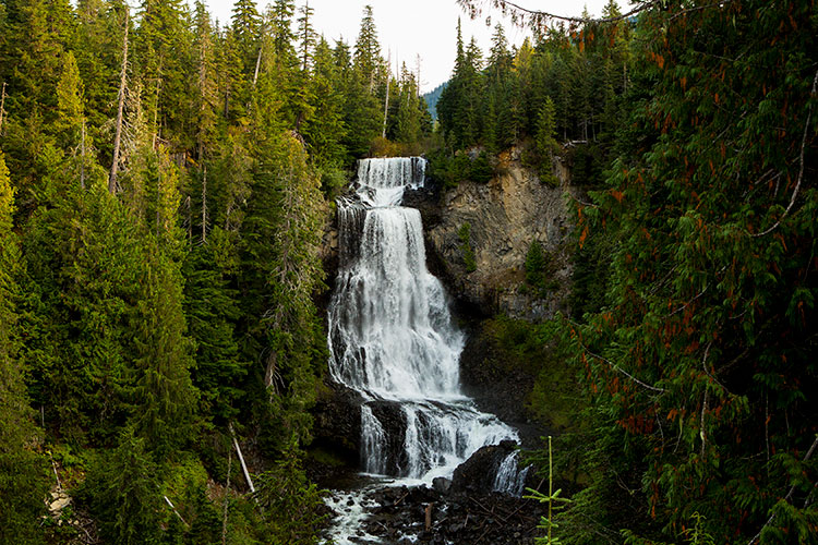 Alexander Falls with rich, green foliage flanking it.
