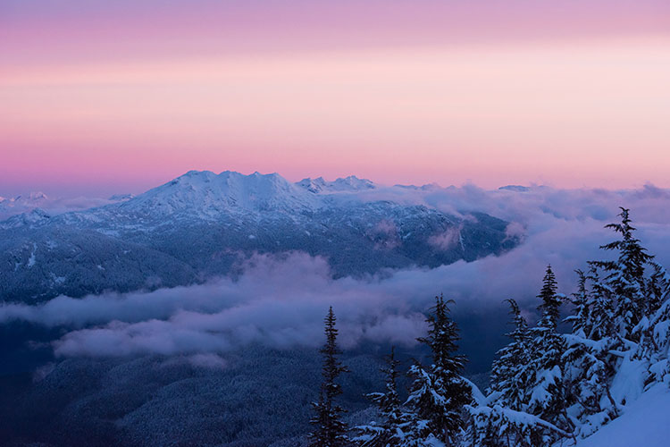 A pinky purple alpenglow in Whistler.