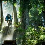 A mountain biker rides through the trees in Whistler Bike Park.