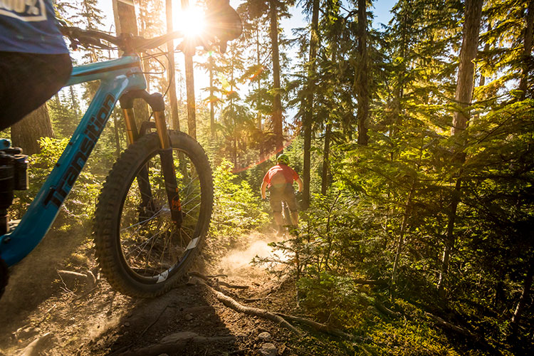 Two mountain bikers ride down a dusty, rooty trail in Whistler.