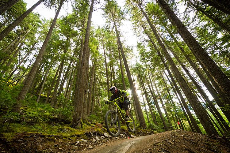 A mountain biker gets a little air in the Whistler Bike Park.