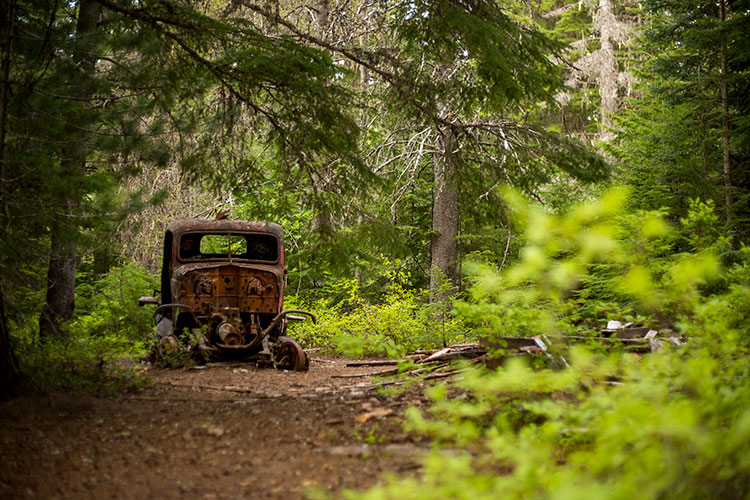 An old , rusted vehicle sits in the forest at the Parkhurst site.