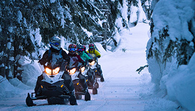 Snowmobile Tours Whistler