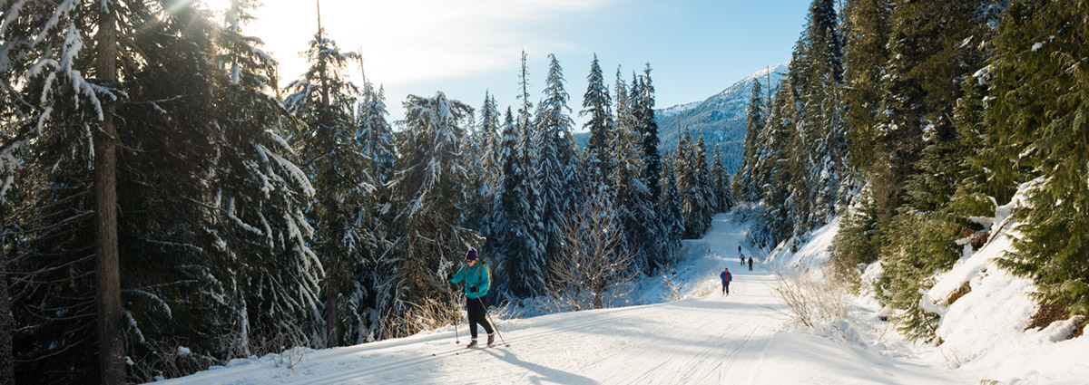 Whistler Olympic Park Packages