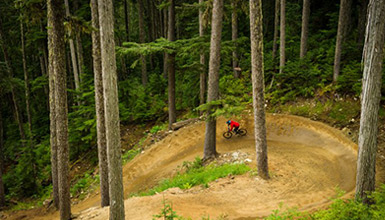 Riding the Whistler Mountain Bike Park in Whistler BC