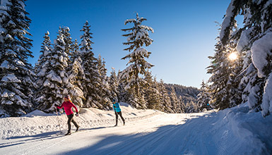 Cross-country skiing in Whistler