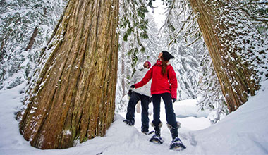 30% Off Snowshoe Tours