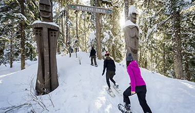 Snowshoe Winter Early Booking Offer