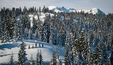 30% Off Snowshoe Tours and Kids are free