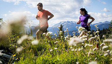 Whistler Local's List Blog
