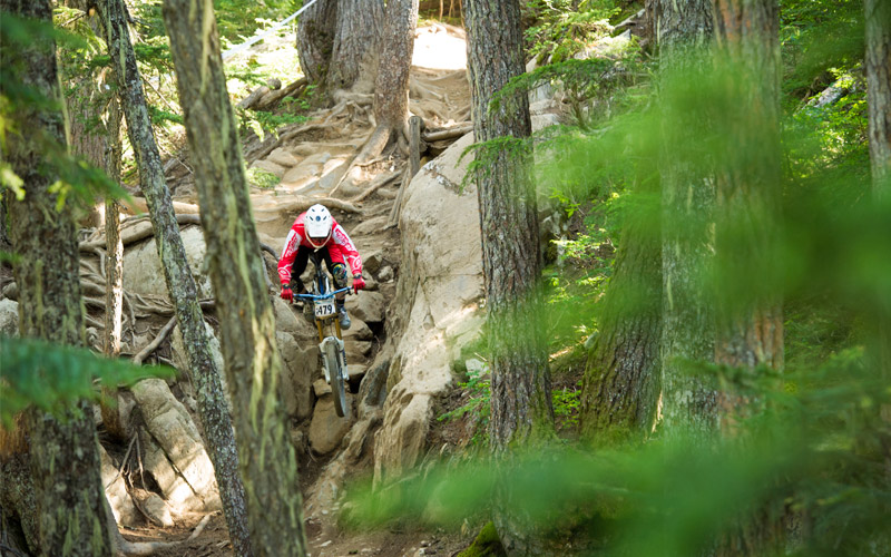 Best Trail Whistler Bike Park