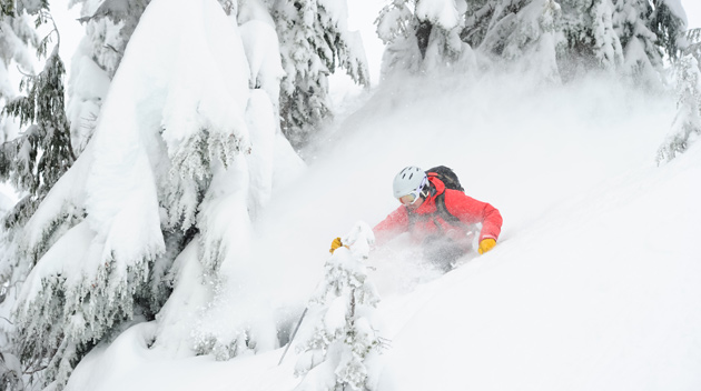 Cat Skiing in Whistler - Cold Smoke