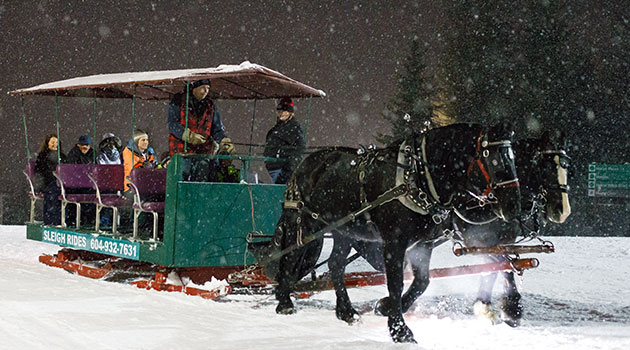 The old-fashioned sleighs are designed for optimal comfort and coziness