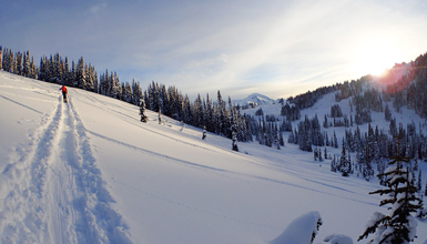 Backcountry Skiing in Whistler