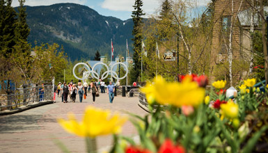 View of Whistler Olympic Rings