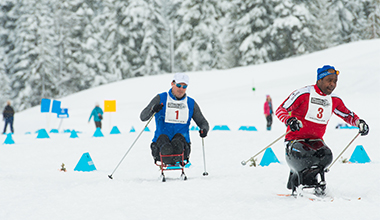Whistler Adaptive Program