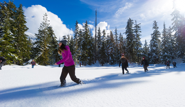 Snowshoeing and Teambuilding in Whistler